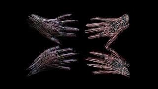 Still from Touching Feeling, Aykan Safoğlu, 12:37 min., 2019